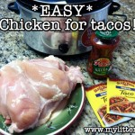 Easy and Simple Seasoned Chicken Taco Meat Recipe