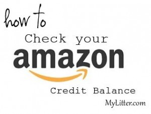 Check Your Amazon Credit Balance