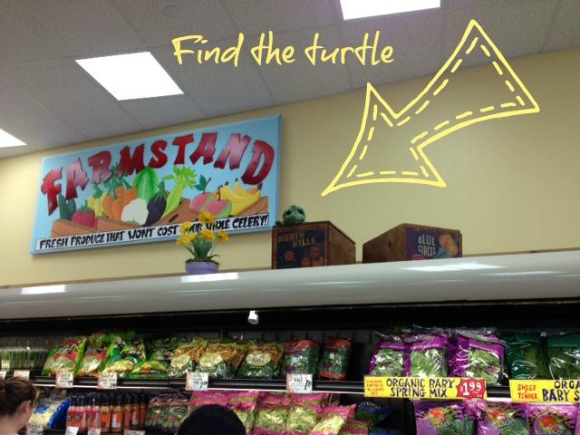 Trader Joes Turtle