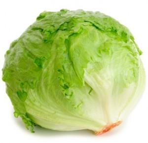 iceburg-lettuce-300x290