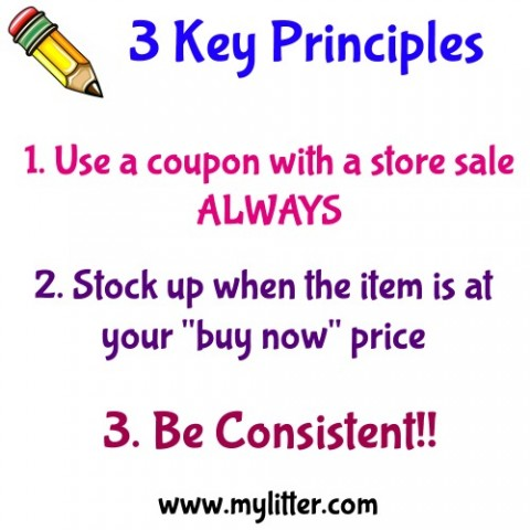 Day 1 3 Key Principles 2