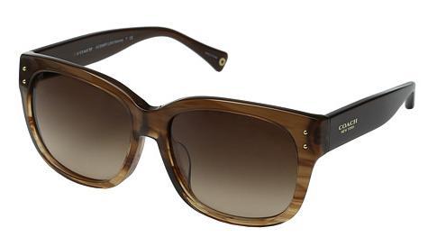 Coach Sunglasses - Sienna