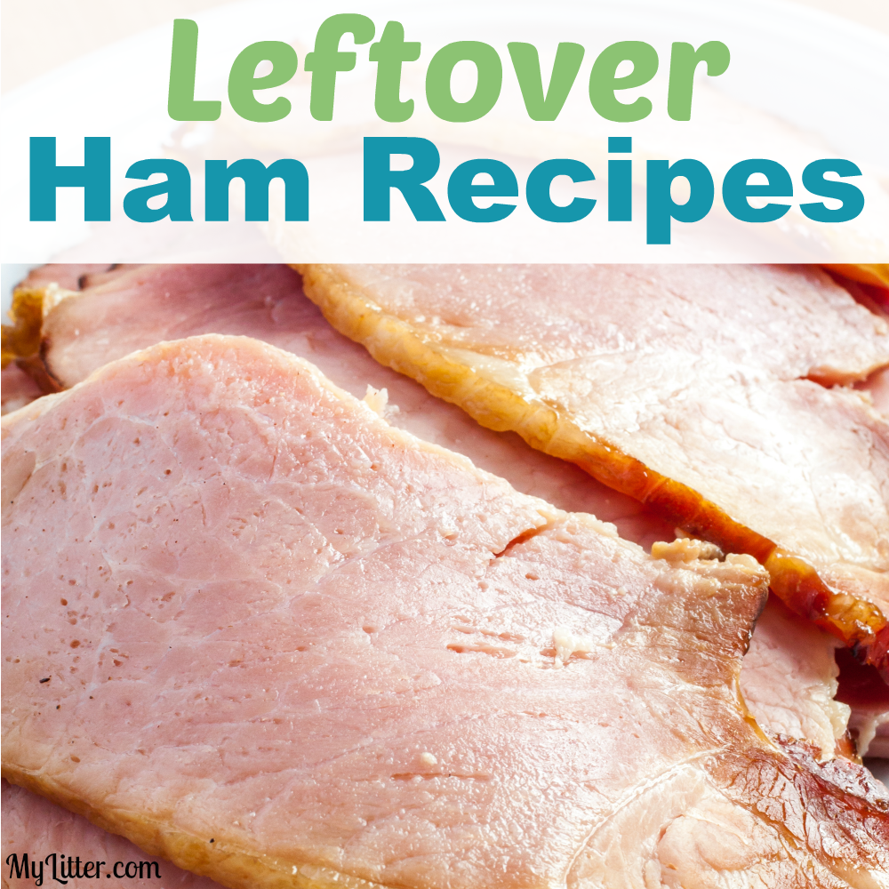 Leftover Ham? Try one of these delicious recipes!