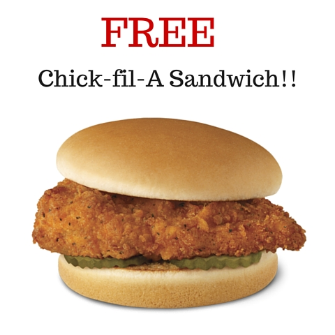 picture regarding Chickfila Printable Coupons referred to as Warm Sizzling Incredibly hot** Cost-free Chick-fil-A Sandwich - MyLitter - 1
