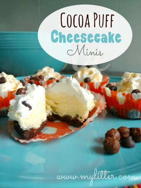 cocoapuff cheesecake minis recipe