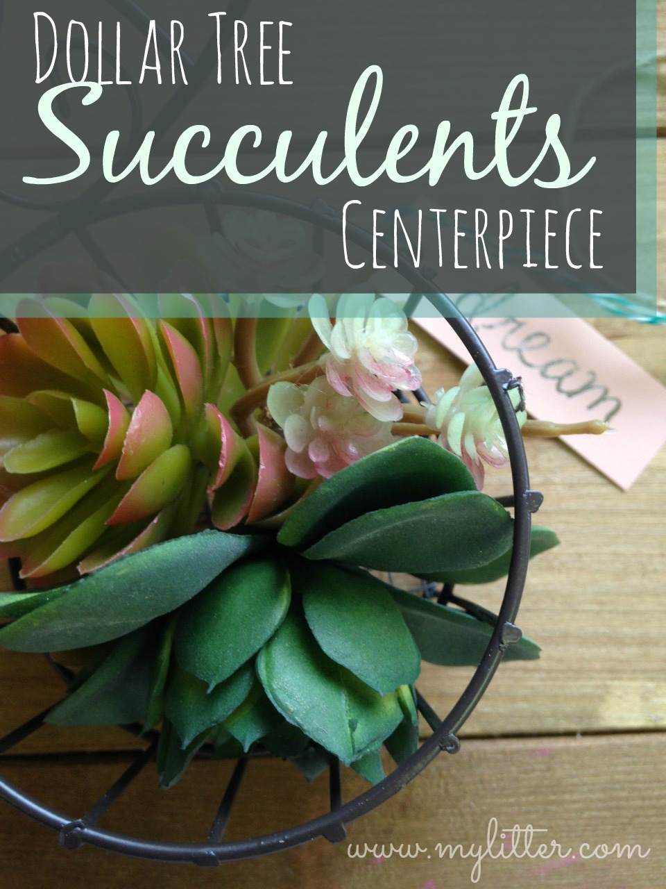this dollar tree succulents centerpiece is super cute!