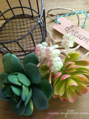 Succulents are so trendy and fresh right now too!