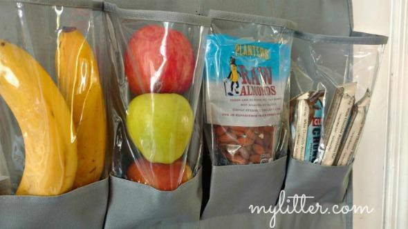 hangingsnacksfruit