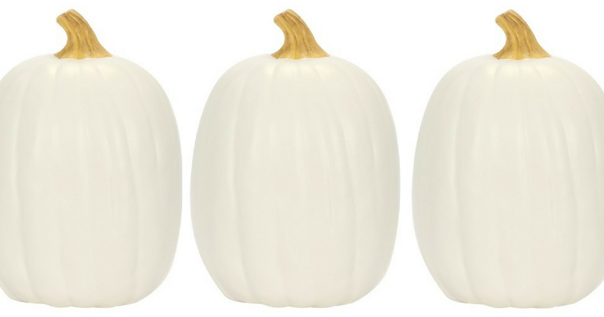 Fall Decor White Pumpkin Only 6 Reg 12 Mylitter One Deal At A Time