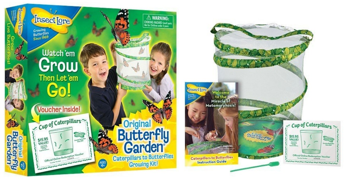 amazon insect lore live butterfly garden only 1999 regular price 2499 - Live Butterfly Garden