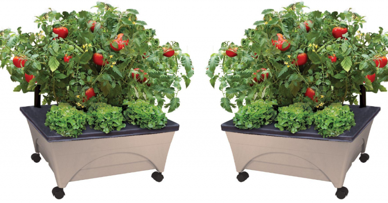 Today Only! Home Depot: Patio Raised Garden Bed Grow Box Kit ... on home depot wooden planter boxes, home depot wood planter box, home depot raised container, home depot pool deck box, home depot raised garden,