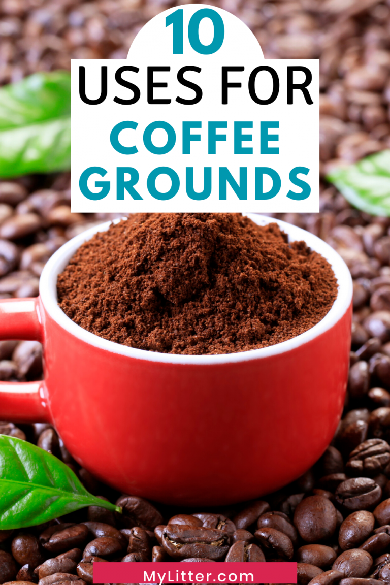 10 uses for Coffee Grounds text above red cup full over coffee grounds