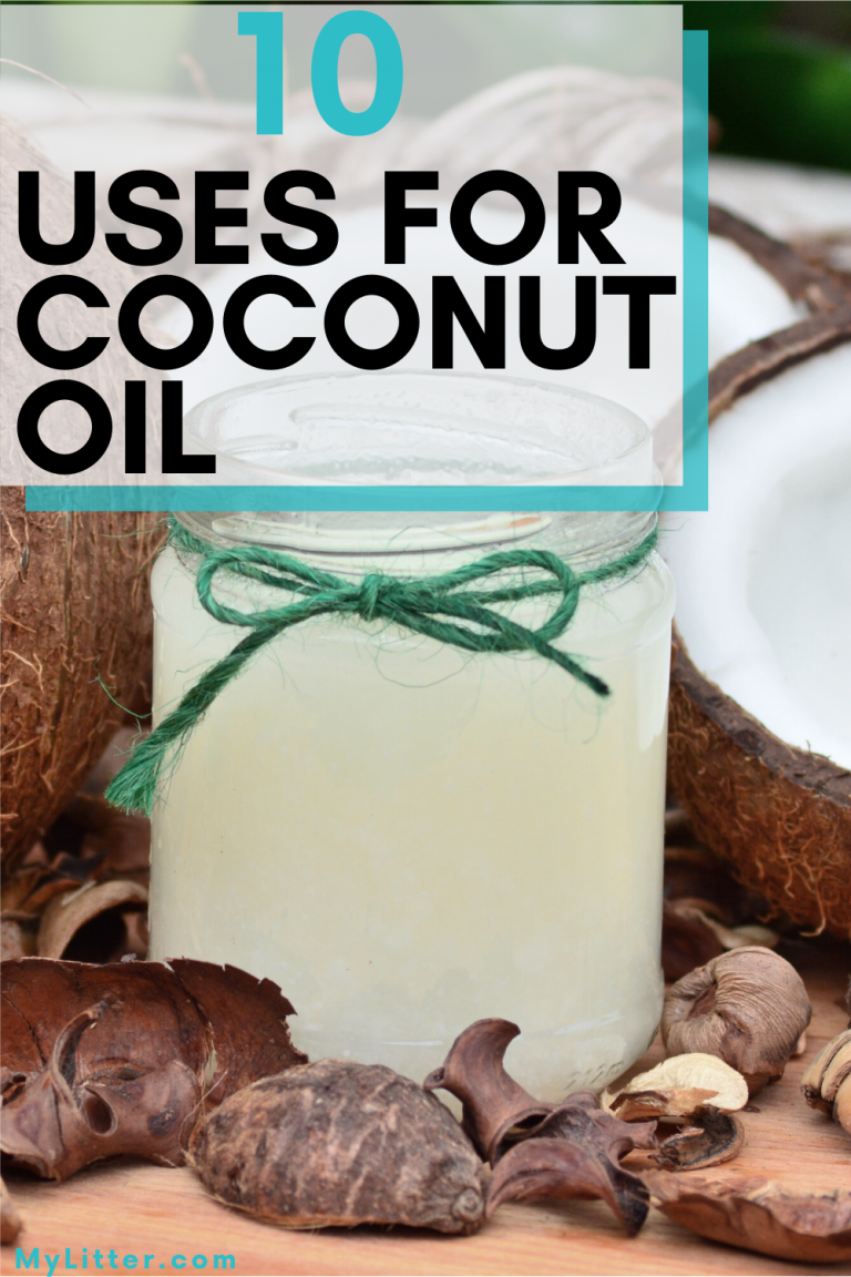 Coconuts with coconut oil in a jar. Text says 10 uses for coconut oil.